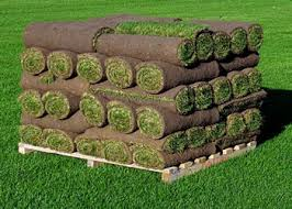 sod delivery edmonton - pallet of grass sod