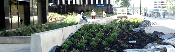 edmonton roof top gardens & green roof systems - commercial plants & rock garden